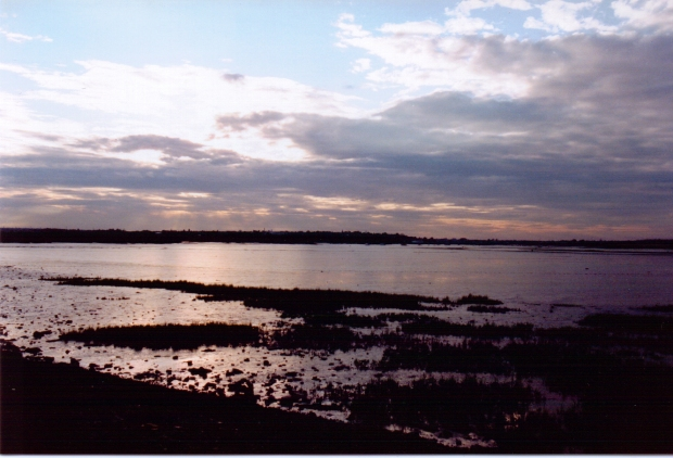 View of Maldon from Northey Island