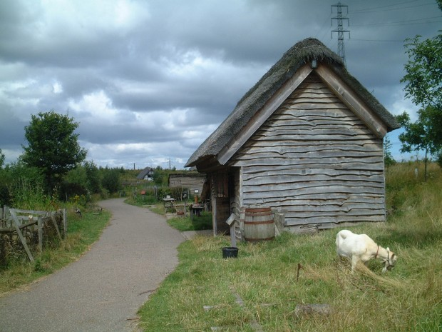 Shed with goat