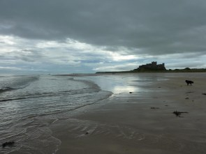 Bamburgh Castle from Beach plus dog