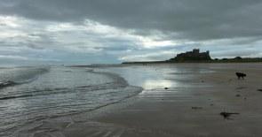 Bamburgh Castle from Beach plus dog