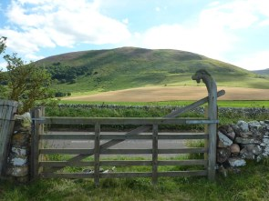 Goat gate to Ad Gefrin, looking back to Yeavering Bell